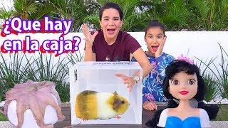 Download ¿QUE HAY EN LA CAJA? | AnaNana Toys Video