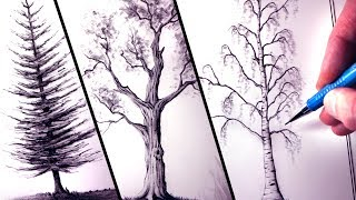 Download How to Draw Trees Video