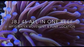 Download Voretch MP10 Reef tank Water movement, Best placement and flow Video