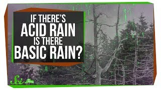Download If There's Acid Rain, Is There Basic Rain? Video