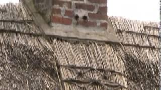 Download Irish Vernacular Heritage Video Video