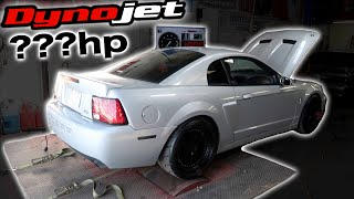 Download First DYNO Pulls of My Terminator COBRA - HOW MUCH? Video