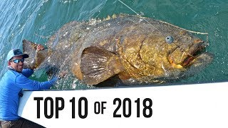 Download Top 10 Best Fishing Moments from 2018 Video