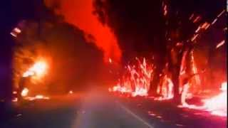 Download Driving through forest fire Video