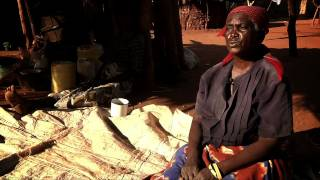 Download Cash transfers provide social protection to Zambia's most vulnerable families Video