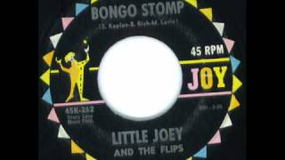 Download Bongo Stomp - Little Joey & Flips Video
