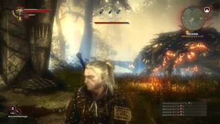 Download The Witcher 2: Kayran boss guide Video