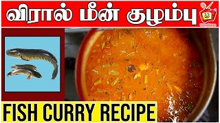 Download Masala Fish curry-tasty and easy recipe | Viral Meen Kulambu | Murrel Fish Curry Recipe Video