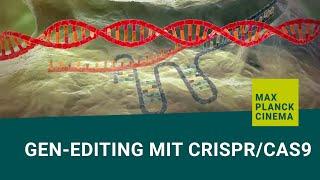 Download Gen-editing mit CRISPR/Cas9 (english subtitles) Video