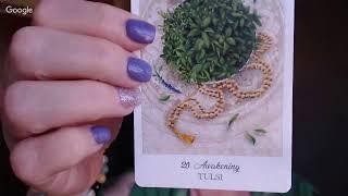 Download ArwenTalksTarot: Herbcrafters Tarot Unboxing and Flip-Through Video