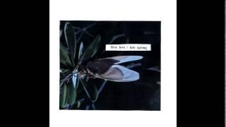 Download Mitski - First Love / Late Spring Video
