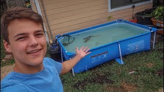 Download NEW Backyard POOL POND for PACU!!! Video