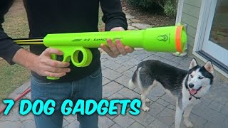 Download 7 Dog Gadgets Put to the Test Video