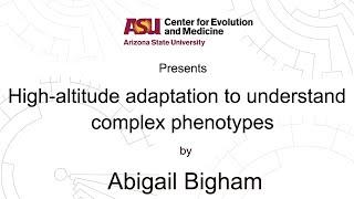 Download High-altitude adaptation to understand complex phenotypes | Abigail Bigham Video