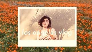 Download L.A. Vlog • Poppy Fields + First Stick & Poke Video