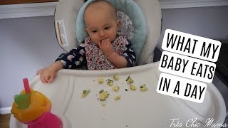 Download WHAT MY 12 MONTH OLD EATS IN A DAY| Tres Chic Mama Video