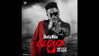 Download Shatta Wale - Never Plan For This (Audio Slide) Video