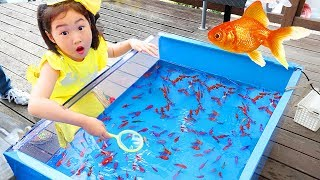 Download 보람이의 핑크퐁 아기상어 낚시놀이 물고기 잡기 Catch Real Fish with Pinkfong Fishing Toys Video