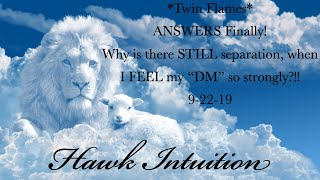 Download *Twin Flames* ANSWERS Finally! Why is there STILL separation, when I FEEL my ″DM″ so strongly?!! Video