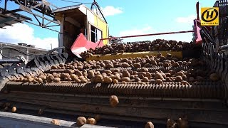 Download Урожай-2019. Картошки хватит всем! Video