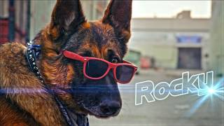 Download Rocky! Video