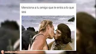 Download Momos Random Shidoris, Los Memes Virales Más Graciosos Del Momento Si Te Ríes Pierdes Nivel 63 Video