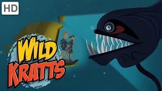 Download Wild Kratts - Top Season 4 Moments (77 Minutes!) | Kids Videos Video