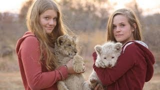 Download Baby Lions and Leaving Africa Video