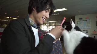 Download 福士蒼汰が動物と戯れる『旅猫リポート』メイキング Video