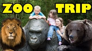 Download Zoo Animals - Cute Animals - Funny Animals - An Amazing Zoo Trip Video