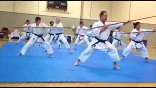 Download Bo Kihon Kata Video