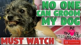Download No One Can Groom My Dog Video