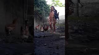 Download Pegando a galinha da vizinhakkkkkkk Video