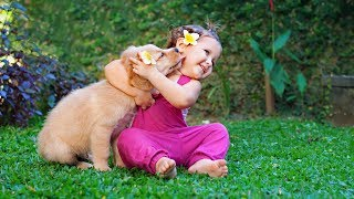 Download Puppies and Babies Playing Together Compilation 2014 Video