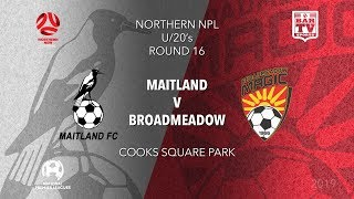 Download 2019 NPL Northern NSW u20s - Round 16 Catch up - Maitland Magpies v Broadmeadow Magic Video