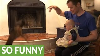 Download Cute baby can't stop laughing at jumping puppy Video