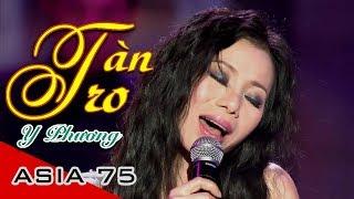 Download Tàn Tro, Niềm Đau Chôn Dấu | Lời Việt Julie | Y Phương, Lê Anh Quân Video