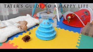 Download Tater's Guide to a Happy Life Video