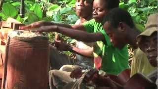 Download Orchéstre Baka Gbiné playing ″Ima Gati″ - album version Video