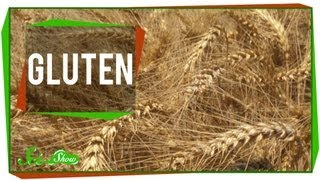 Download Gluten Video