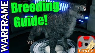 Download Warframe Kubrow Breeding Guide! [1080HD] Video