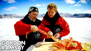 Download Catching and Cooking King Crab - Gordon Ramsay Video