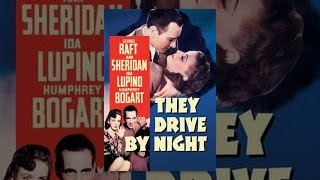 Download They Drive By Night Video