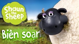 Download Biên soạn 16-20 [phần 4] - Những Chú Cừu Thông Minh Video