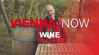 Download Vienna and its wine | VIENNA/NOW Video