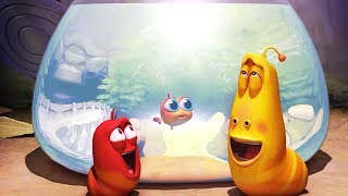 Download LARVA - AQUARIUM | Larva 2017 | Cartoons For Children | Larva Cartoon | LARVA Official Video