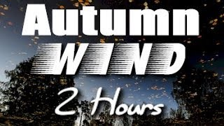 Download Autumn Wind Sounds : 2 Hour Long Relaxing Nature Sounds for Sleep Video