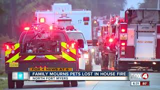 Download Two dogs killed in house fire Video