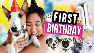 Download MY SON'S EPIC FIRST BIRTHDAY!!!! Video
