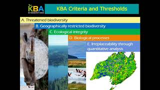 Download Guidelines on Business and KBAs Managing Risk to Biodiversity Video